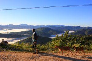 Grand'Anse, Haiti, farmer and goats (2014)