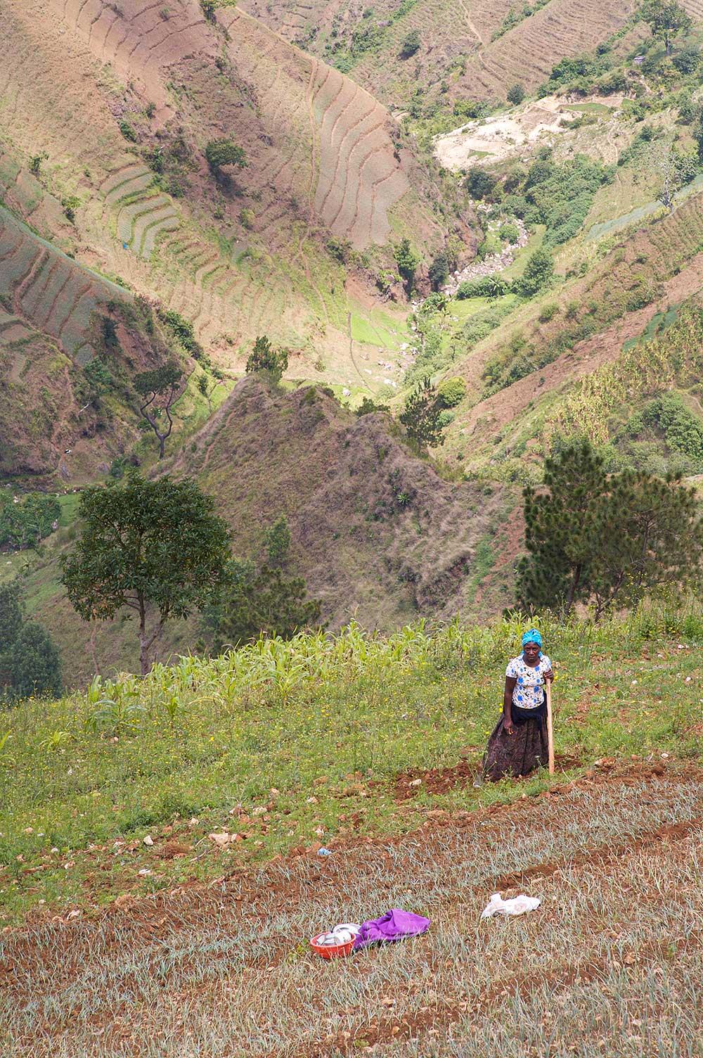 Peasant woman (2008)