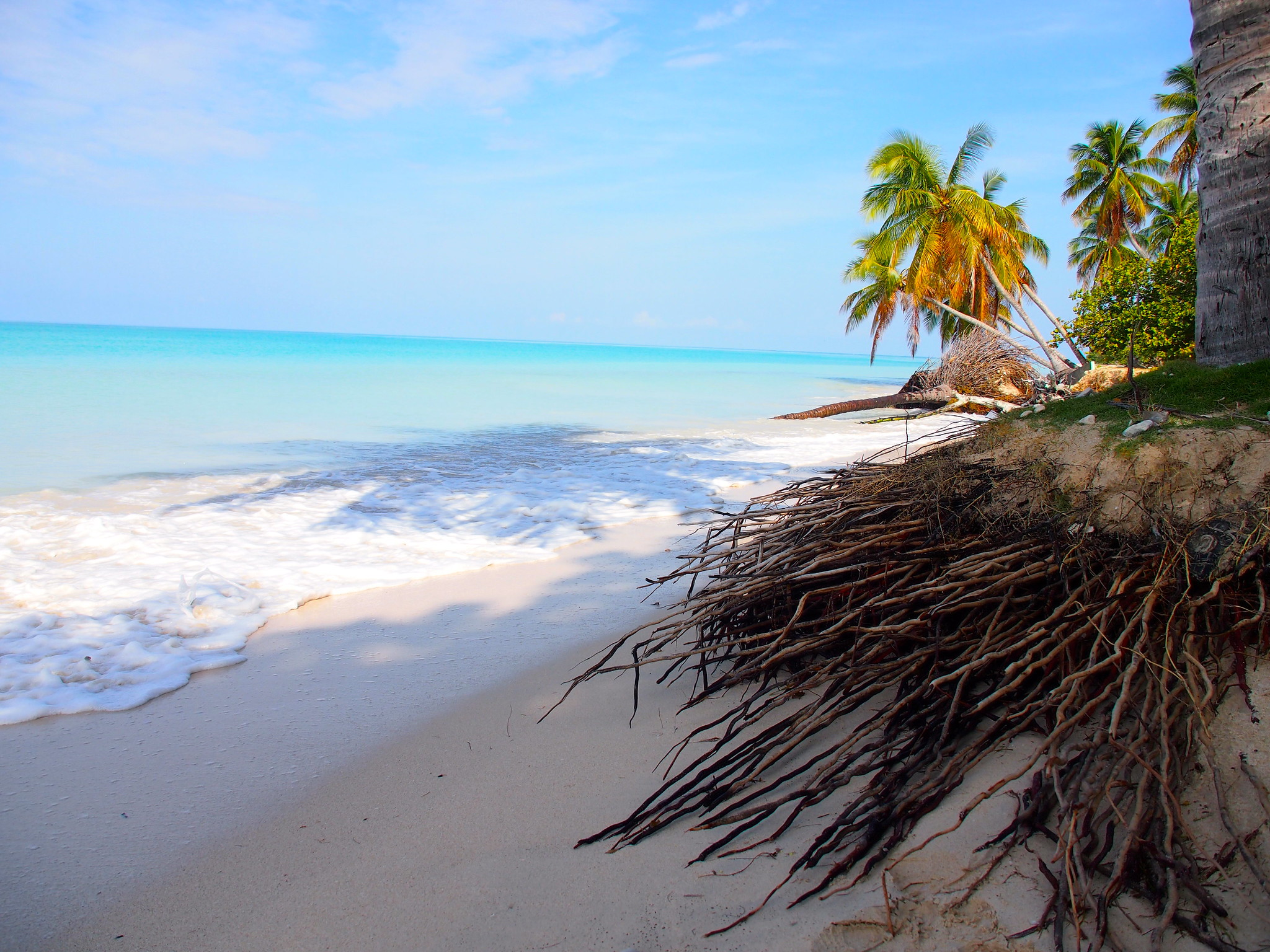 Read more about the article Beach in Port Salut