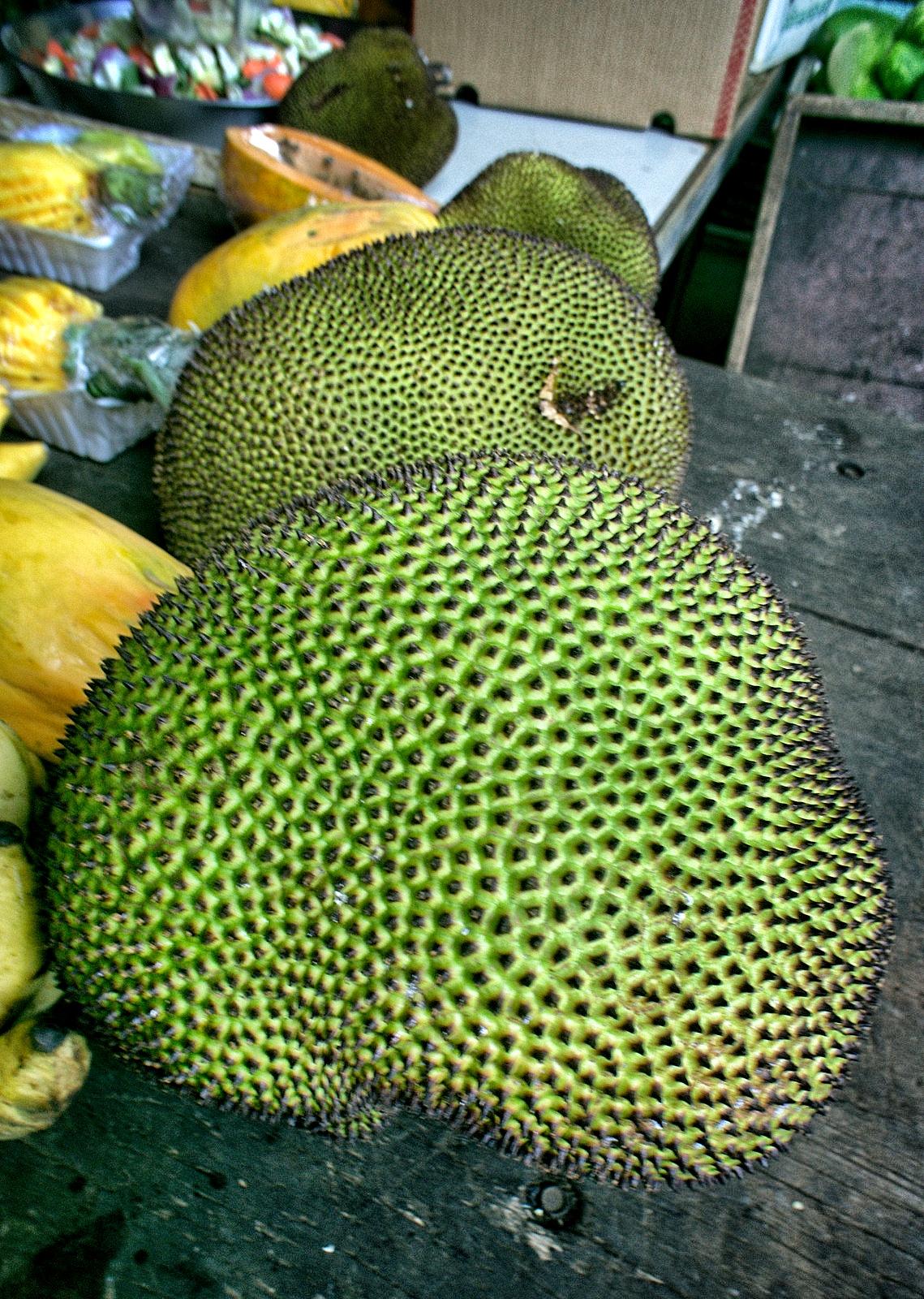 Haitian Jackfruit