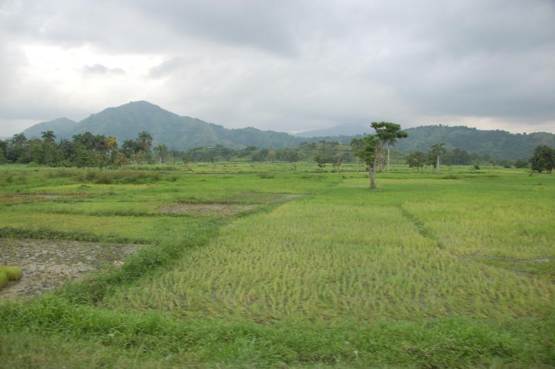Read more about the article Gonaïves, Haiti