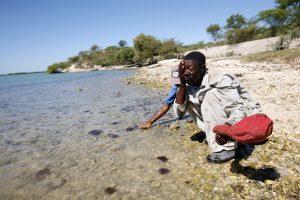 Haitian Grave Diggers Rest After Arduous Work