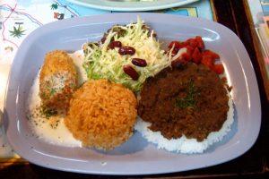 Haitian plate