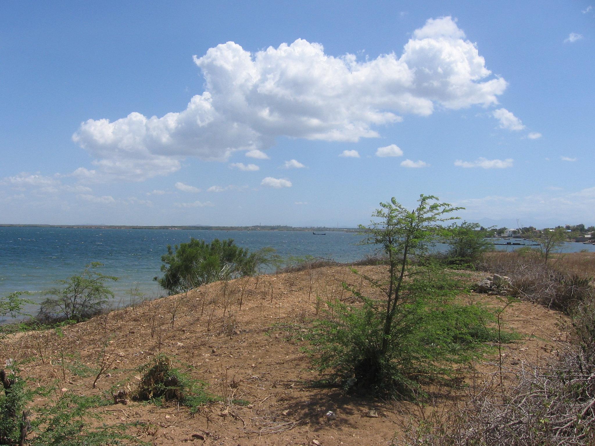 Deforested area from the coast, Haiti