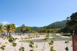 Club Orient - Labadee, Haiti